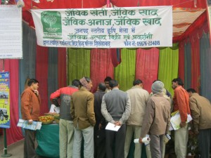 Organization of Agro Fair – Shikohabad